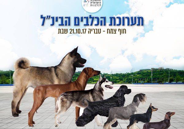 תערוכת הכלבים הבינלאומית בצמח | 21.10.17