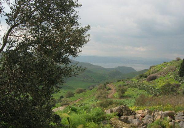 מעיינות באזור אפיק