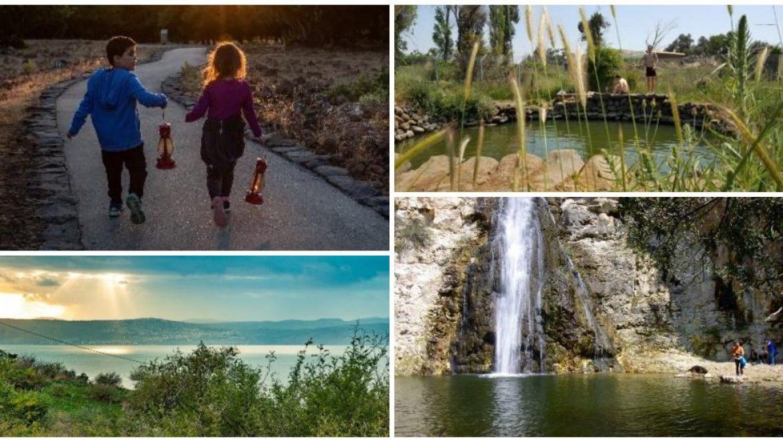 חוויית נופש קייצית למשפחות בגולן